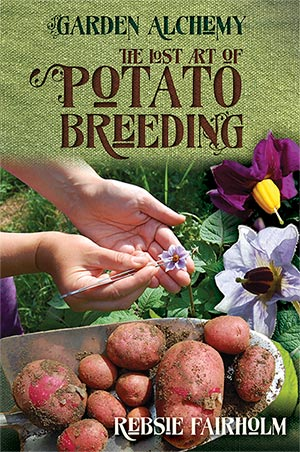Potatobreeding300