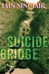 SuicideBridge300