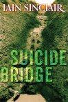 SuicideBridge300